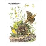 Audubon Eastern Meadowlark Birds Small Poster