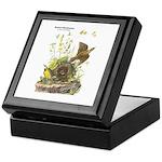 Audubon Eastern Meadowlark Birds Keepsake Box