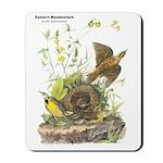 Audubon Eastern Meadowlark Birds Mousepad
