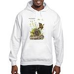 Audubon Eastern Meadowlark Birds Hooded Sweatshirt