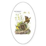 Audubon Eastern Meadowlark Birds Sticker (Oval 10