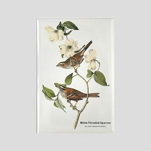 Audubon White-Throated Sparrow Rectangle Magnet
