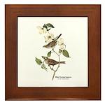 Audubon White-Throated Sparrow Framed Tile