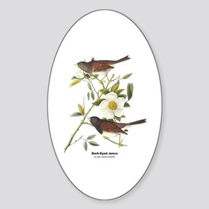 Audubon Dark-Eyed Junco Bird Oval Sticker