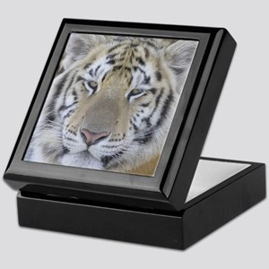 Tiger Portait Keepsake Box