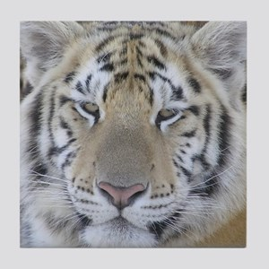 Tiger Portait Tile Coaster