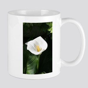 South African Lily, Flower, Mug