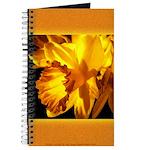 Yellow Daffodil Journal