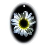 Daisy Flower Oval Ornament