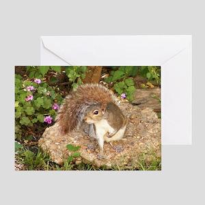 Fancy Squirrel Greeting Card