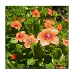 Scarlet Pimpernel Tile Coaster