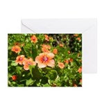 Scarlet Pimpernel Greeting Cards (Pk of 10)