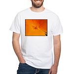 California Poppy White T-Shirt