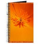 California Poppy Journal