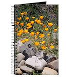 California Poppies Journal