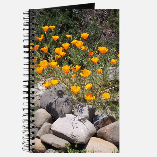 California Poppies Journal