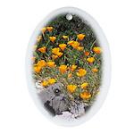 California Poppies Keepsake (Oval)