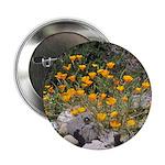California Poppies Button