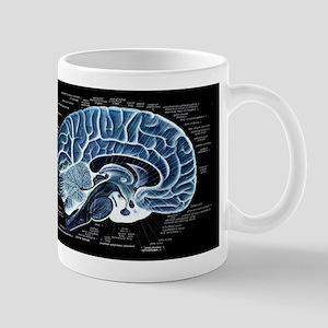 Human Brain Mug