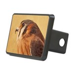 American Kestrel Rectangular Hitch Cover