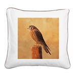 American Kestrel Square Canvas Pillow