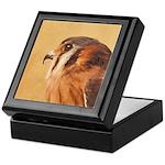 American Kestrel Keepsake Box