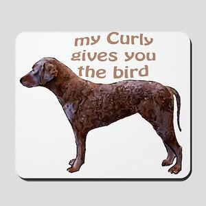 Curly Coat Bird Mousepad