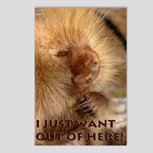 I Want Out Postcards (Package of 8)