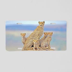 Cheetah Family Aluminum License Plate