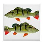 Speckled Pavon Tile Coaster
