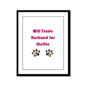Will Trade Husband 4 Sheltie Framed Panel Print