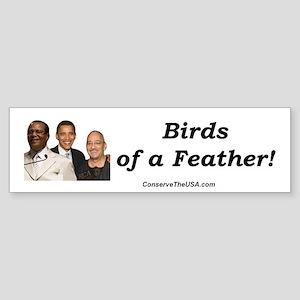 """""""Birds of a Feather"""" Bumper Sticker"""
