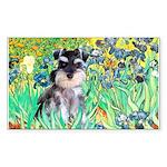 Irises / Miniature Schnauzer Sticker (Rectangle)