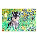 Irises / Miniature Schnauzer Postcards (Package of