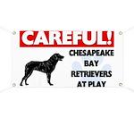 Chesapeake Bay Retrievers At Play Banner