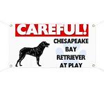Chesapeake Bay Retriever At Play Banner