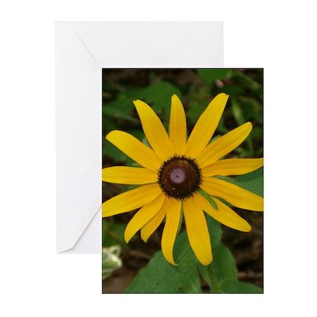 Flower / Gardening Cards (10)