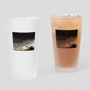 Foreverman Birds Drinking Glass