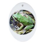 Pacific Chorus Frog Treefrog Oval Ornament