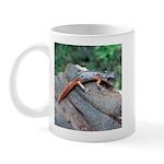 Ensatina Salamander Mug