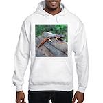 Ensatina Salamander Hooded Sweatshirt