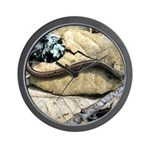 California Slender Salamander Wall Clock