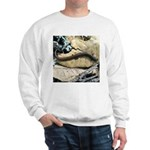 California Slender Salamander Sweatshirt