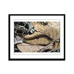 California Slender Salamander Framed Panel Print
