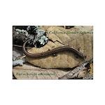 Calif. Slender Salamander Rectangle Magnet