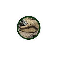 Calif. Slender Salamander Mini Button (10 pack)