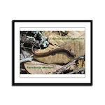 Calif. Slender Salamander Framed Panel Print