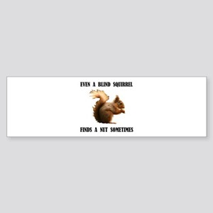 BLIND SQUIRREL Bumper Sticker