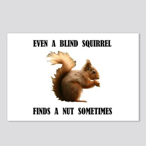 BLIND SQUIRREL Postcards (Package of 8)