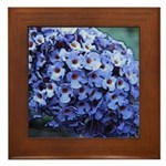Butterfly Bush Floral Framed Tile